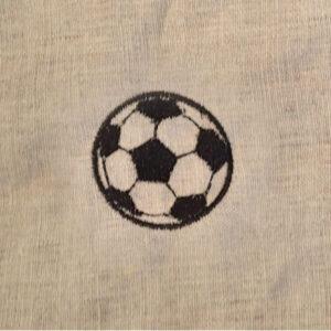 soccer-demo1