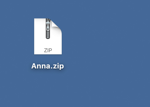 Zip file needs to be extracted to obtain BX files