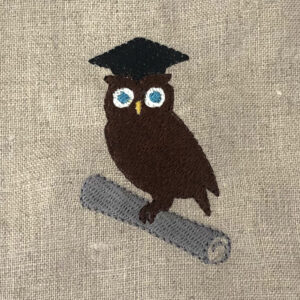 brainy owl graduate
